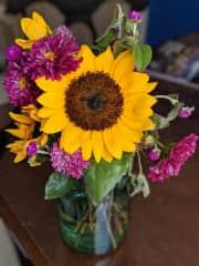 An arrangement of flowers from my own garden