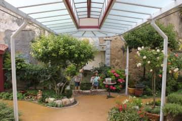 Our garden under the gallerie