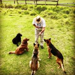 Joe with pups at a campsite in Cuenca, Ecuador