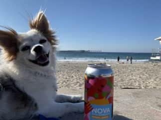 Presley is a Beach Bum/Model :)