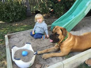 Our big girl Flossie the Mastiff and our grandson Acheron