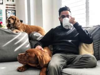 Morning tea with Bronx and Winnie