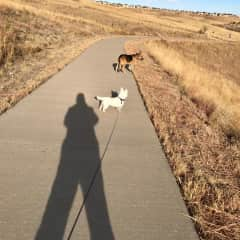 Autumn with my 2 furry friends in Colorado