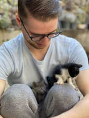 Taking care of abandoned kittens in Mexico.