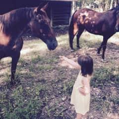 Miriam with her grandparents' horses