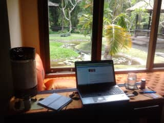 Writing my book in a beautiful location in the Monkey Forest in Ubud, Bali