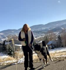 House and dog sitting in Eagle, Colorado