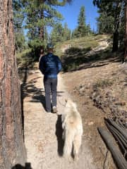 Walking our bud Ely during a sit in Lake Tahoe