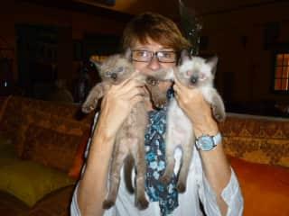 Katrien, 2 kitties