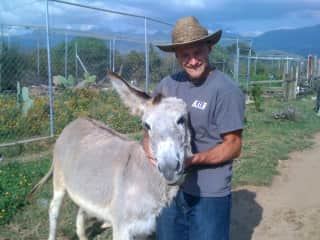 Mexico - spent a few weeks on a farm taking care of exotic and farm animals