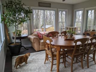 Sunroom/Dining room at the back of the house. You can sort of tell that we are in a very wooded and secluded area.