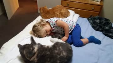 Ayla with our 2 cats, Burt and Ernie, who we had to leave behind when we left New Zealand:(