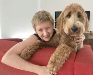 Kirsty and Lenny the groodle share the same hair colourist. Ormiston, Brisbane, Australia. December, 2020.
