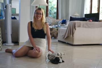 Dog sitting in Bali