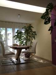Bright dinning area