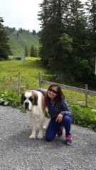 Visiting Austria