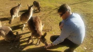 Tomas making friends with some kangaroos in Tasmania