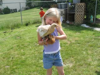 I had pet chickens growing up :) I am better at holding them now!