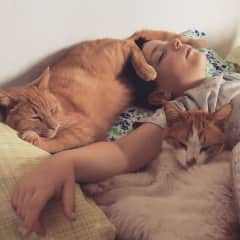 Jonathan and our kittie boys