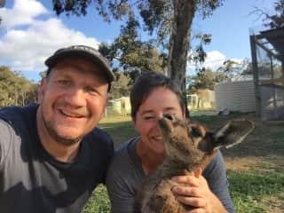 We were working as wwoofer at a Australia Kangaroo-Sanctuary