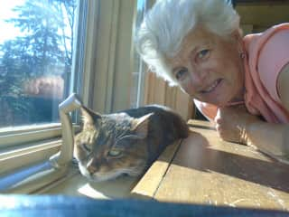 Enjoying the sun and view in the Laurentian Mountains, Quebec, with the lovely senior cat, Ivana.