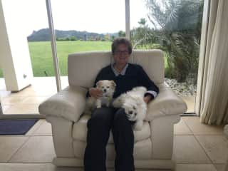 Steffi, Snowy and Louis in NZ