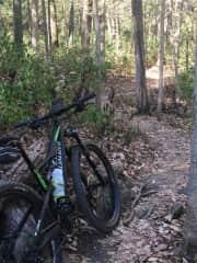 Mountain Biking, Nashville TN