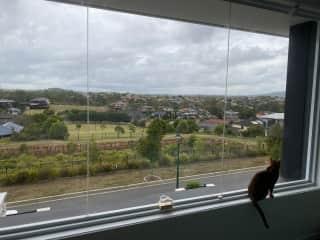 Views to Mt Gravatt