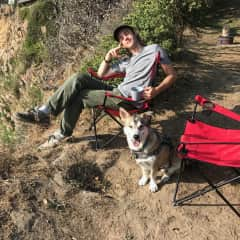 Another past Rover client Winston the corgi-husky. We took him camping with us and he had a blast.
