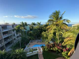 Palm tree and ocean views.  Nice breeze off the ocean temps are perfect 70-80s