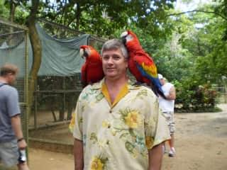 Matt with the parrots in Roatan