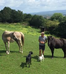 Eddie and Blackie with Poppy and Millie