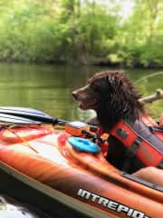 Kayaking with our dog Deacon
