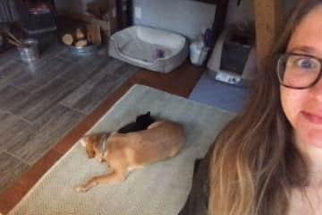 Peach (the dog), Helen (the cat), and Caitlin