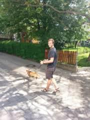 Walking is our favorite pastime.  Here, Jordan walks Apollo the Corgi in Slovenia.
