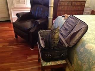 Simon, helping me pack.