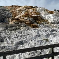 Mammoth Hot Springs 8/2020   Yellowstone