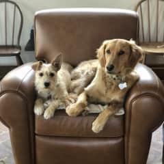 Hazel and Loulou