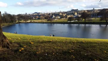 Swan pond at Inverleith Park, a six-minute walk from home. Overlooking The Castle.