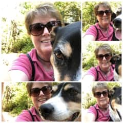 Ziggy liked the hike but did not share my passion for selfies! (Oakland 2019)