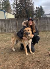 Koda is a good boy! One of my sitting pets. Spokane, WA
