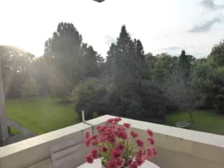 View from balcony over gardens