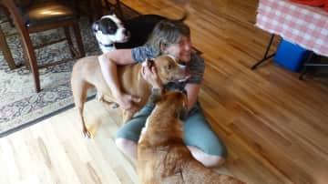 Loving Boomer, Tillie and Wanda