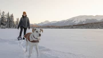 Anna Snowshoeing with Luna! Dogs need exercise and we are happy to join in!