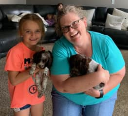 Brittany puppies I chanced upon, on a visit to my Nephew's house.  Couldn't resist a cuddle.