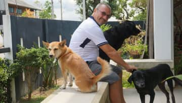Pet Sitting in Chiang Mai, Thailand with Bella, Boonchoo and Boonlai