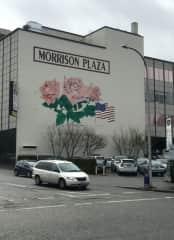 Portland, city of roses