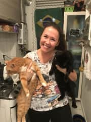 My wife and her cats in Rio de Janeiro, that now live with her mom. Ginger cat is Taz and the black one is Stephanie, both rescued from the streets.