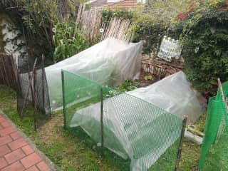 Our small orchard with greenhouses for the winter