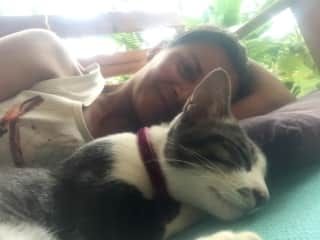 Taking a nap with my friend's cat Popo.